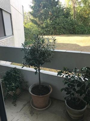 Appartement Rueil Malmaison 2 pièce(s) 55 m2
