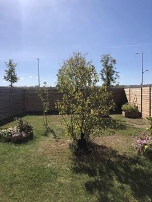 Bezannes type 2 rez-de-jardin avec accès handicape