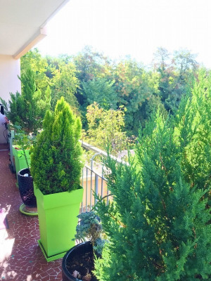 ***bel environnement, au calme et verdoyant***