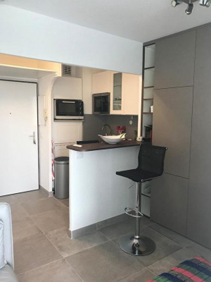 Appartement La Grande Motte 2 pièce(s) 28 m2