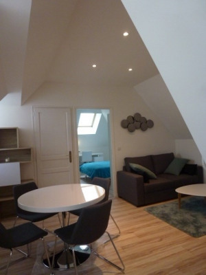 Modern 1 bedroom flat between Insead campus and center