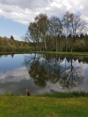 Terrain plus étang