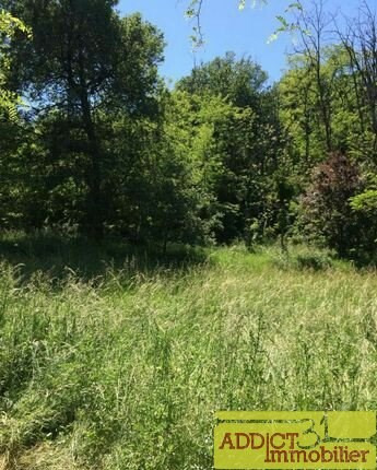 Vente terrain Secteur rabastens 57 000€ - Photo 1