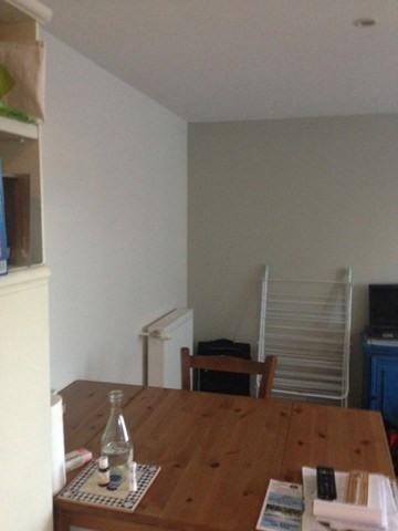 Verhuren  appartement Roche-la-moliere 420€ CC - Foto 8