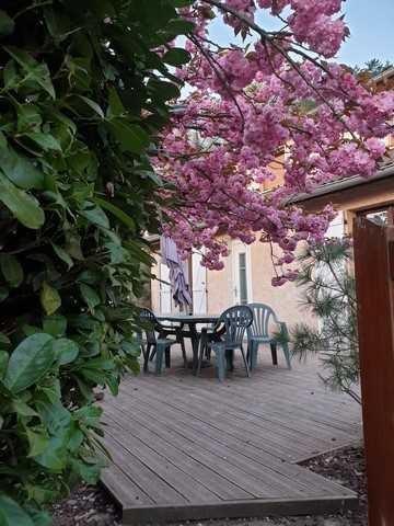 Vente maison / villa Saint-genest-lerpt 249000€ - Photo 2