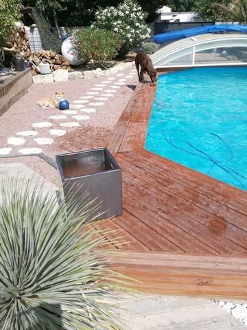 Vente maison / villa Chaillevette 291000€ - Photo 15
