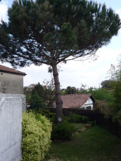 Vente maison / villa Leon 220000€ - Photo 5