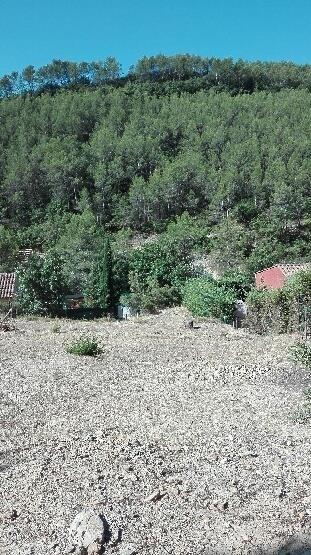 Vente terrain Vins sur caramy 78000€ - Photo 2