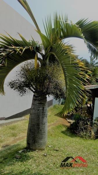 Vente maison / villa Petite ile 180000€ - Photo 4