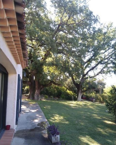 Vente de prestige maison / villa Tourves 598500€ - Photo 3