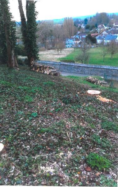 Vente terrain Chaumont en vexin 66000€ - Photo 4