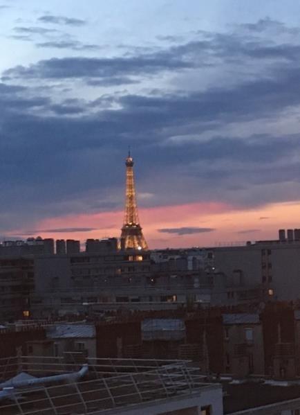 Vente appartement Paris 15ème 988000€ - Photo 10