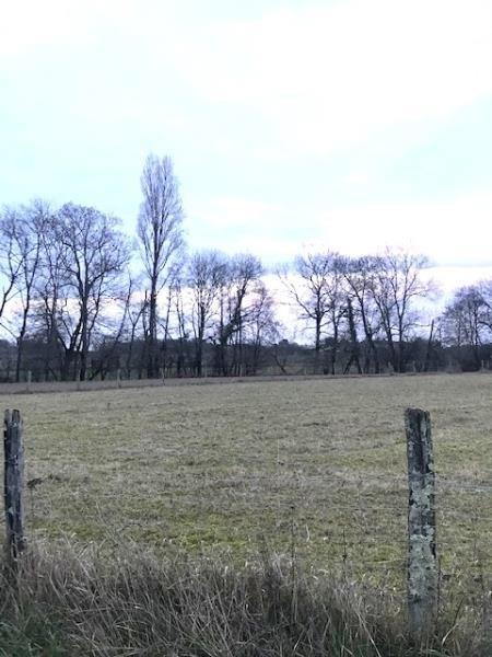 Vente terrain St andre de cubzac 65000€ - Photo 2