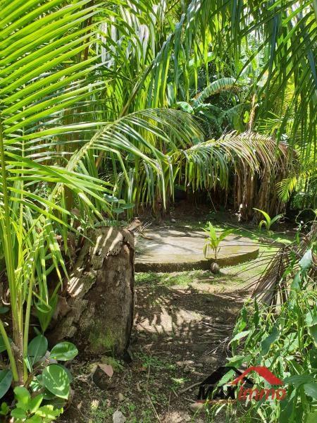 Vente terrain Sainte anne 90000€ - Photo 1