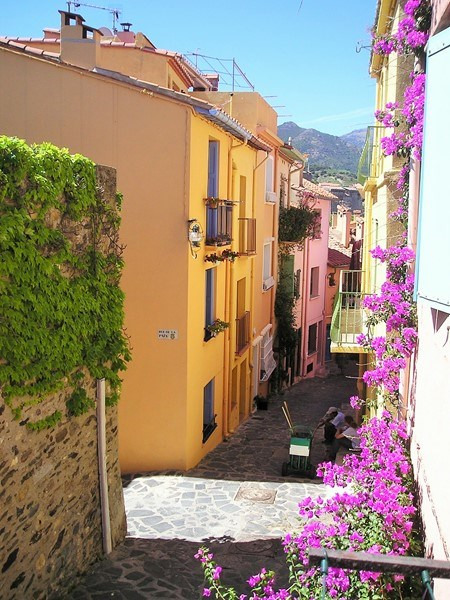 Location vacances appartement Collioure 193€ - Photo 5