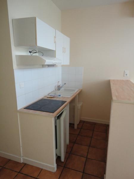 Location appartement Grenoble 500€ CC - Photo 5