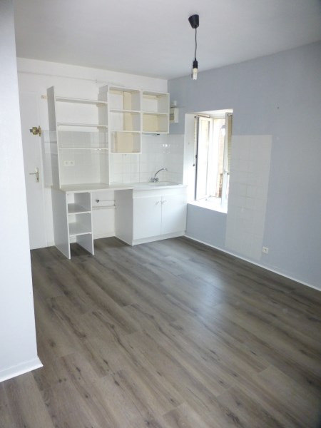 Rental apartment Cremieu 467€ CC - Picture 1