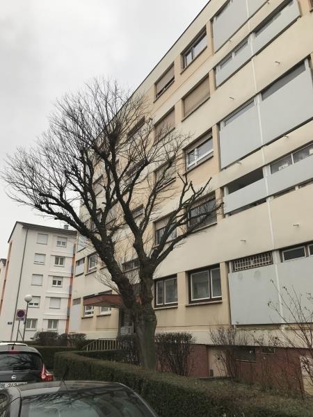 Appartement 3 pièces bischheim