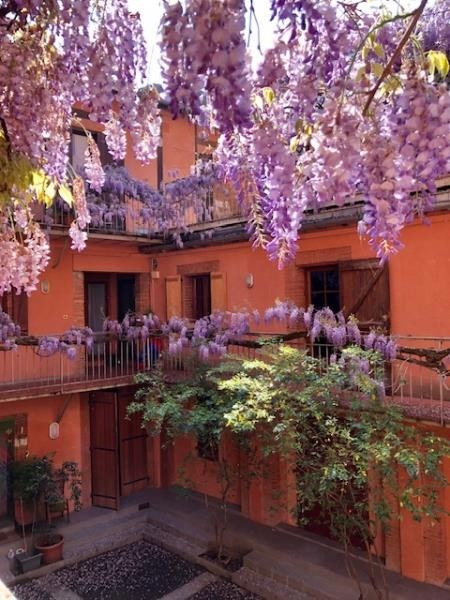 Rental apartment Toulouse 441€ CC - Picture 1