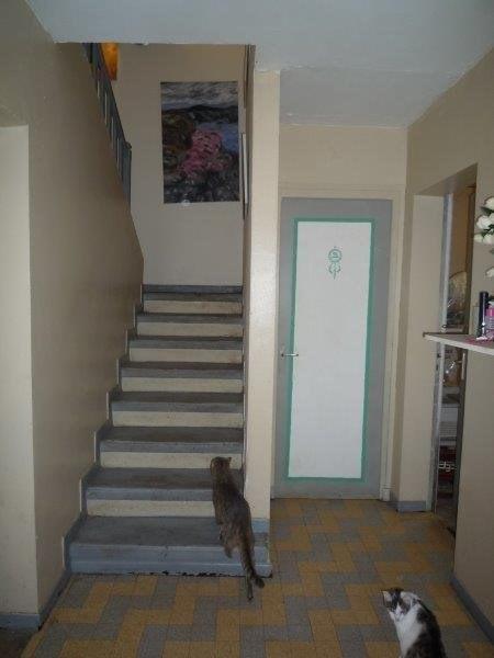 Vente maison / villa Rochepaule 249000€ - Photo 13