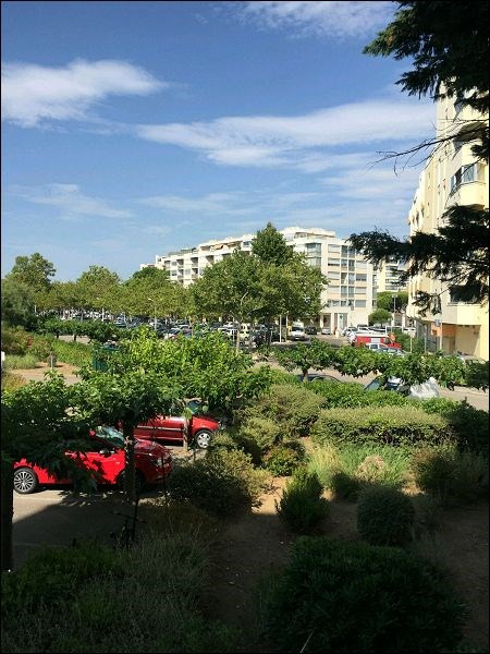 Location appartement Mauguio 450€ CC - Photo 2