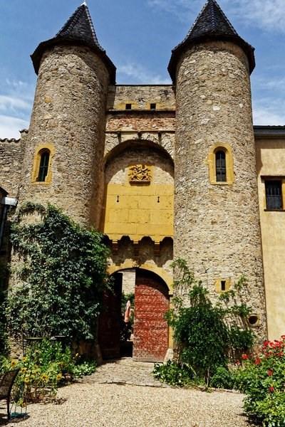 Vente maison / villa Lyon 1er 740000€ - Photo 17