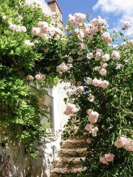 Sale house / villa Dolus d'oleron 362960€ - Picture 7