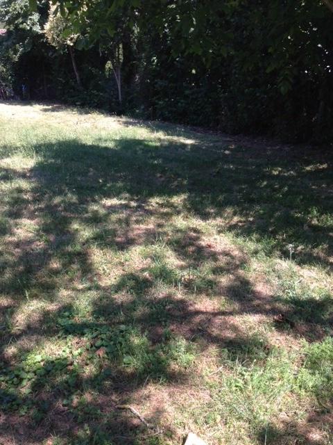 Vente terrain Pinsaguel 158000€ - Photo 3