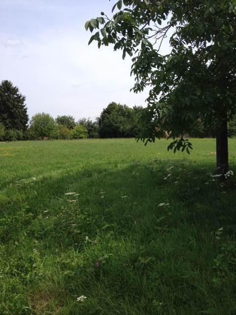 Vente terrain Cuisery 10 mns 22200€ - Photo 1
