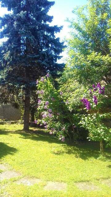 Sale house / villa Moosch 204000€ - Picture 5