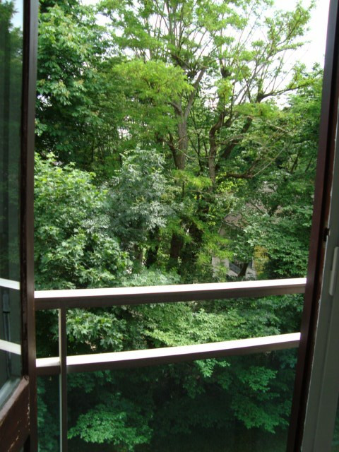 Alquiler  apartamento Louveciennes 750€ CC - Fotografía 4