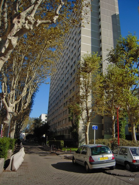Rental apartment Villeurbanne 525€ CC - Picture 1