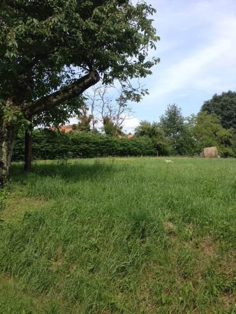 Vente terrain Cuisery 10 mns 22200€ - Photo 2