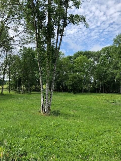 Vente terrain St jean de bonneval 118 000€ - Photo 2