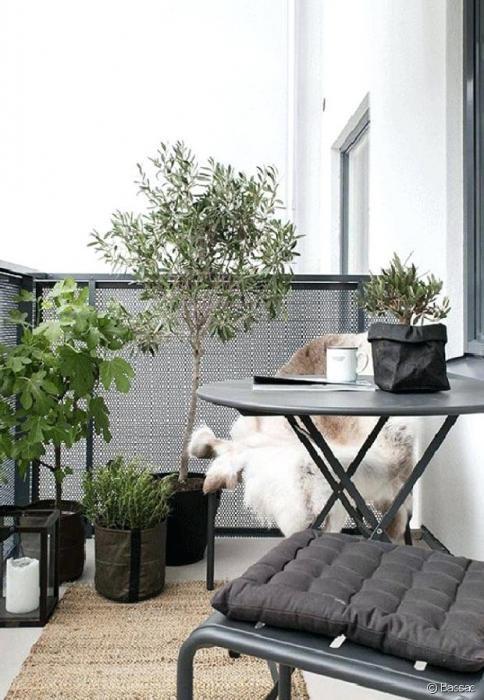 Sale apartment Villeurbanne 250000€ - Picture 1