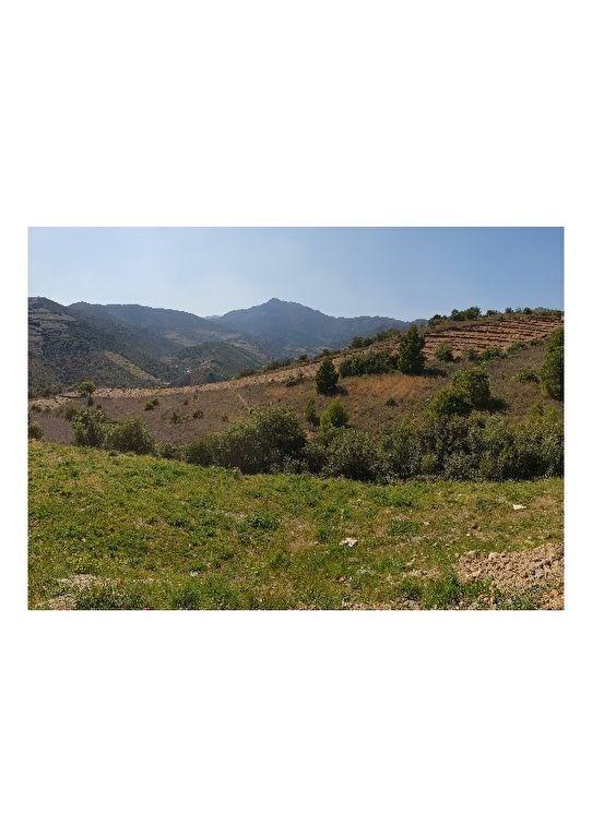 Vente terrain Cerbere 92000€ - Photo 1