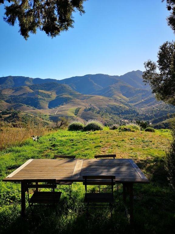 Vente de prestige maison / villa Banyuls sur mer 777000€ - Photo 6
