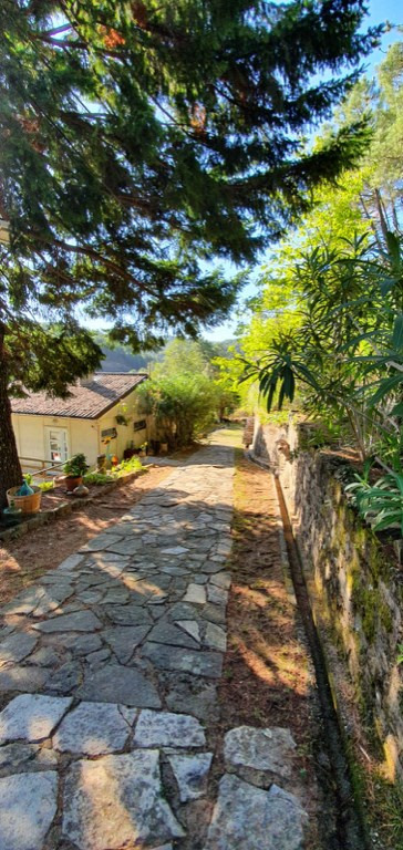 Vente maison / villa Branoux les taillades 260000€ - Photo 9
