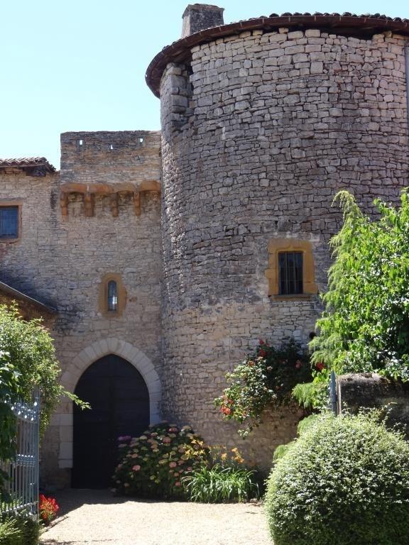 Vente de prestige château Morance 2300000€ - Photo 2
