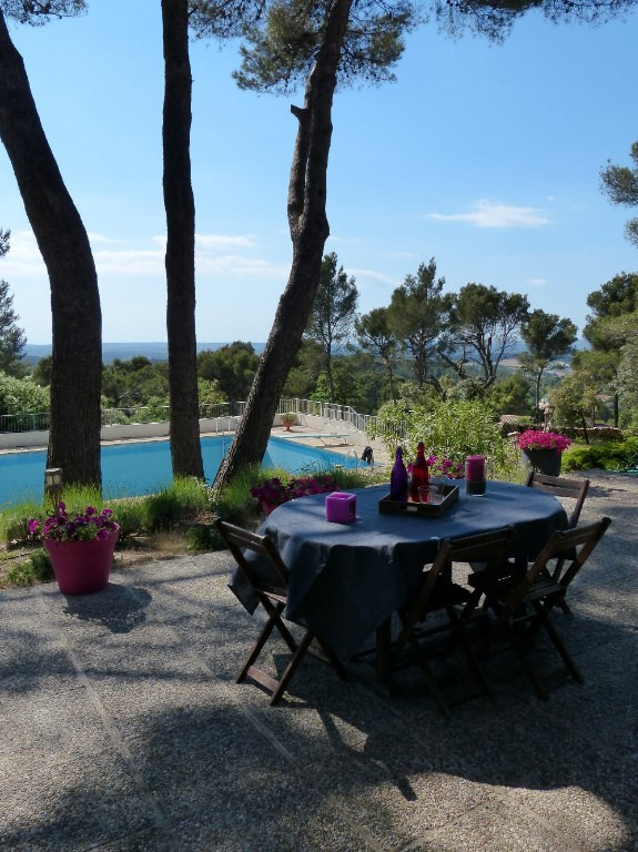 Deluxe sale house / villa Bouc bel air 890 000€ - Picture 4