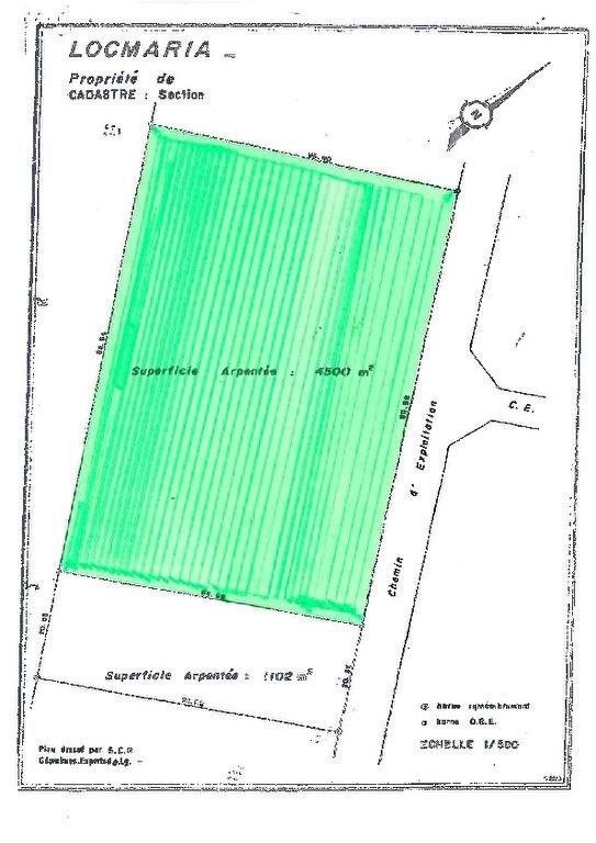Verkauf grundstück Locmaria 6700€ - Fotografie 5