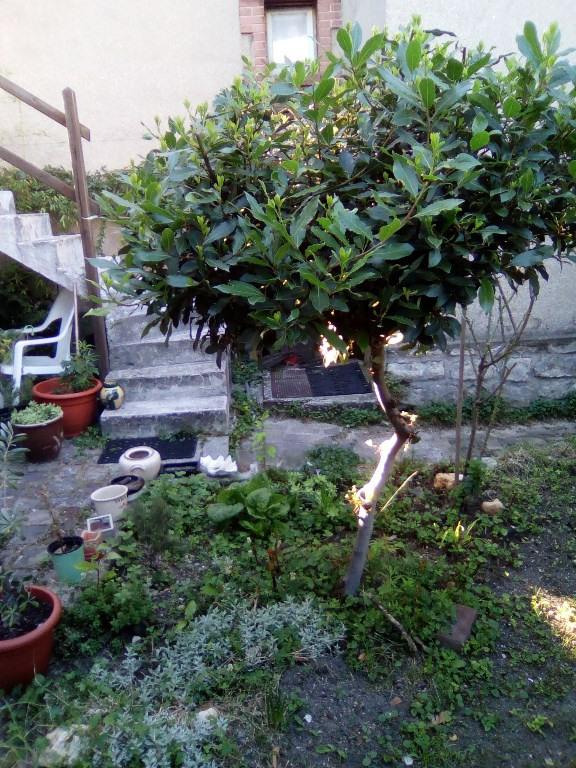 Vente maison / villa Arcueil 480000€ - Photo 9
