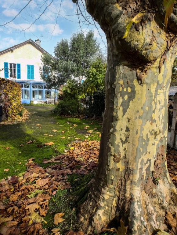 Sale house / villa Gelos 461000€ - Picture 6