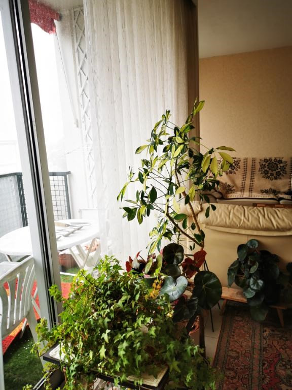 Vente appartement Marly le roi 228800€ - Photo 3