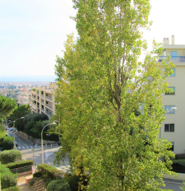 Vente appartement Nice 227 000€ - Photo 3