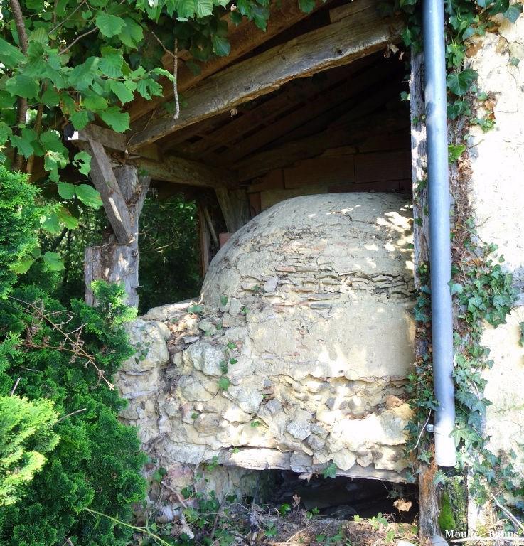 Vente maison / villa Eugenie les bains 53000€ - Photo 3