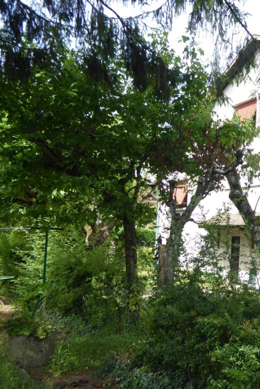 Vente maison / villa Bourgoin jallieu 165 000€ - Photo 1