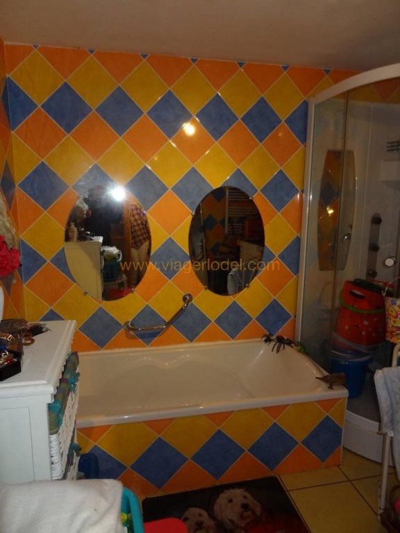 Viager maison / villa Aspiran 70000€ - Photo 15