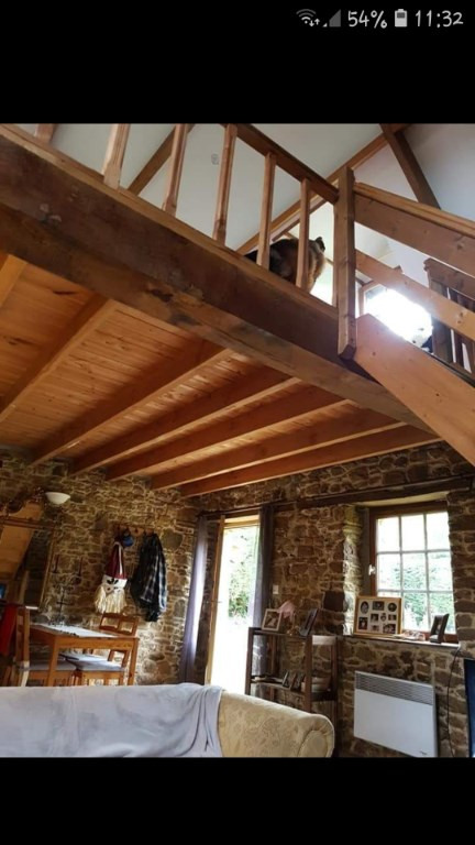 Vente de prestige maison / villa Dol de bretagne 588500€ - Photo 13