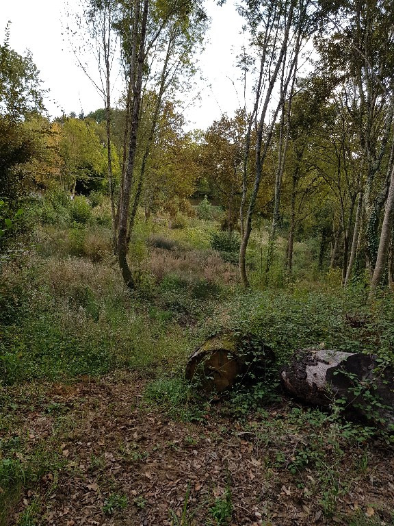 Vente terrain Jurancon 69 000€ - Photo 3